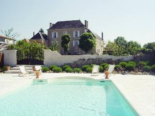 Beautifully restored bourgeois manor house - La Caillere vacation rentals