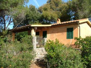 Très jolie maisonnete sur coline verdoyante mer - Ansedonia vacation rentals