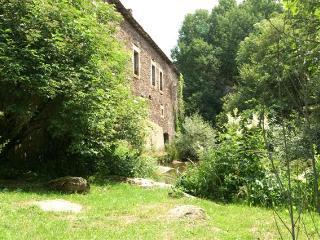 meublé de tourisme dans un ancien moulin - Vezins-de-Levezou vacation rentals