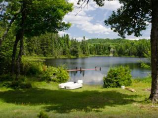 Cozy lakeside cottage in the Laurentians - Sainte-Lucie-des-Laurentides vacation rentals