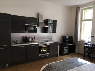 Prague City Center Cosy Flat - Prague vacation rentals