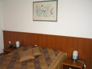 Nice Private room with Internet Access and Elevator Access - Kutina vacation rentals