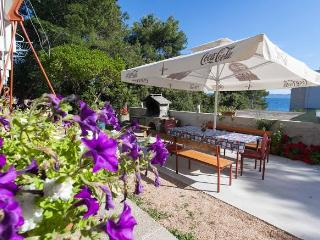 Private house with sea view, 20 m from the beach - Petrcane vacation rentals
