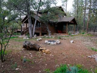 Payson Dog House: Privacy against National Forest - Payson vacation rentals