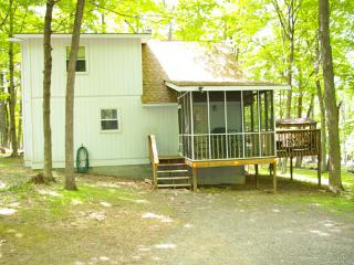 Cozy House with Internet Access and A/C - Berkeley Springs vacation rentals