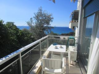 Apartment 50m. from the sandy beach with sea views - Saronida vacation rentals