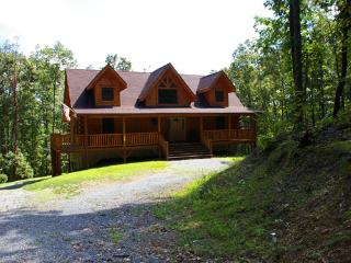 Lovely House with Internet Access and A/C - Berkeley Springs vacation rentals
