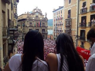 Running with the bulls Balcony - Pamplona vacation rentals