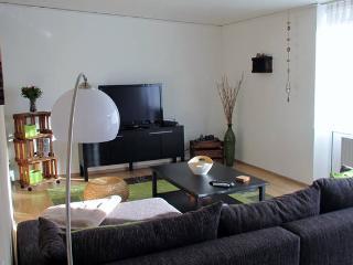 *Gemuetliches Apartment Kirchberg* - Kaiserslautern vacation rentals