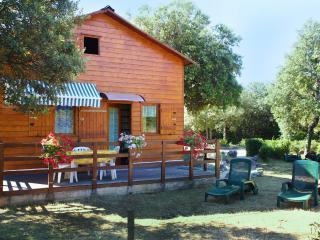 GITES DE PLOS CHALET CLIMATISE PISCINE+WI-FI calme assuré en campagne - Anduze vacation rentals