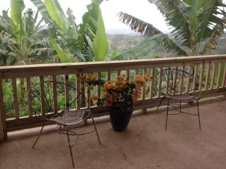 Lovely House with Microwave and Washing Machine - Utuado vacation rentals
