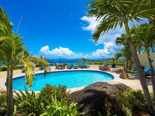Luxury 5 Bedroom Villa Overlooking Magens Bay - Peterborg vacation rentals