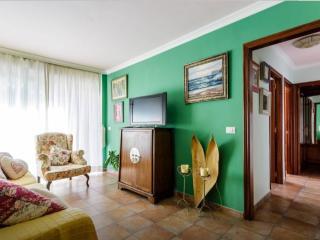 Cozy 3 bedroom Apartment in Los Llanos de Aridane with Television - Los Llanos de Aridane vacation rentals