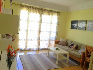 Bright, modern apartment in 200 metres to ocean - Costa Adeje vacation rentals