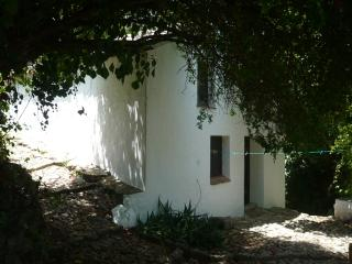 El Zurdo,  Watermill in the  Sierra de Grazalema - Grazalema vacation rentals