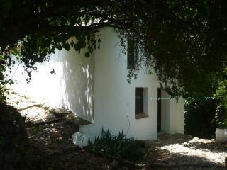 El Zurdo,  Watermill in the  Sierra de Grazalema - Grazalema vacation rentals