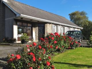 8 bedroom Bed and Breakfast with Internet Access in Tipperary - Tipperary vacation rentals