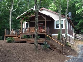 Beautiful House with Washing Machine and Television - Blowing Rock vacation rentals