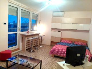 luxury apt w spacious sunny balcony - Belgrade vacation rentals