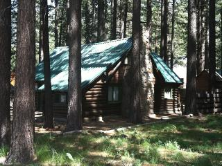 Authentic Log Cabin! 2 Blocks From The Lake - South Lake Tahoe vacation rentals