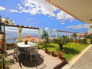 Spacious Villa with Washing Machine and Television - Funchal vacation rentals