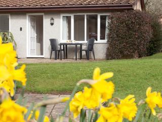 Hengar Manor Country Park, Holiday Bungalow - Saint Tudy vacation rentals