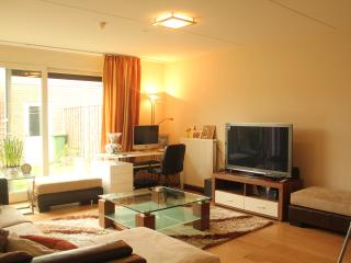 Cozy 3 bedroom Maastricht House with Internet Access - Maastricht vacation rentals