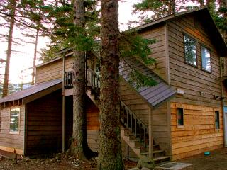Viking Cove Guest Homes Raven studio apartment - Haines vacation rentals