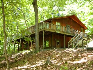 5 bedroom House with Internet Access in Berkeley Springs - Berkeley Springs vacation rentals
