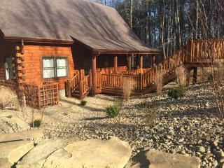 Buona Vita Cabin - South Bloomingville vacation rentals