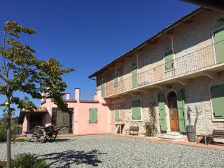 Wine, food, vineyards and landscape in Monferrato - Robella vacation rentals