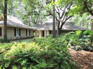 Island Retreat - Hilton Head vacation rentals