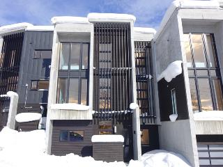 Fubuki Niseko  luxury home 3, 4 and 5 bedrooms - Niseko-cho vacation rentals