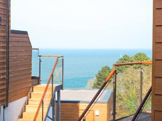Plover 3 - The Cove - Brixham vacation rentals