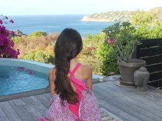 St Barth Private Pool studio and Amazing Sea View - Anse de Lorient vacation rentals