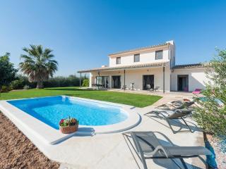 SORT LLARGA  - Property for 8 people in SA POBLA - Sa Pobla vacation rentals