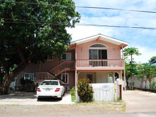 Lahaina Pink Villa - Lahaina vacation rentals