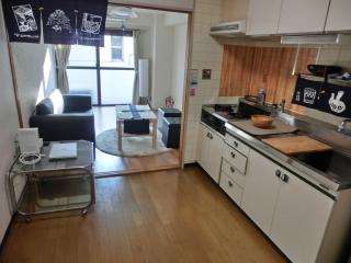 Convenient Tokyo Apt w Hi-Speed Internet - Suginami vacation rentals
