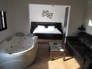 Executive studio middle of everything hot tub, AC - Medellin vacation rentals