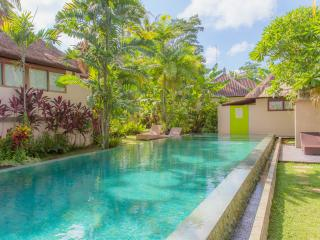 Matahari Villas - Awakening into a Dream - Bali vacation rentals