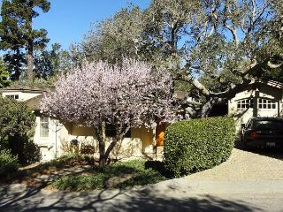 3712 Blue Skies - Walk to Town, Beach, Designer Updated Carmel Cottage - Carmel-by-the-Sea vacation rentals