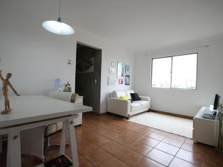 ★Santa Cruz SP 93★ - Sao Paulo vacation rentals