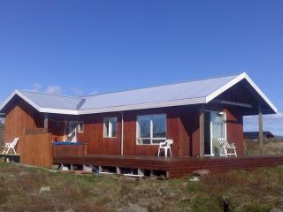 Perfect House with Internet Access and Television - Selfoss vacation rentals