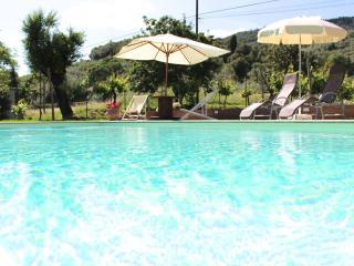 Bright 2 bedroom Condo in Castiglion Fiorentino - Castiglion Fiorentino vacation rentals