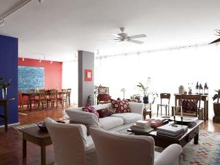 Gorgeous 2 bedroom House in Sao Paulo - Sao Paulo vacation rentals