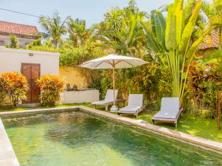 Lovely Villa -  Perfect For Couples Or Singles ! - Seminyak vacation rentals