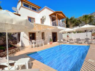 Villa Olive 7 - Kalkan vacation rentals