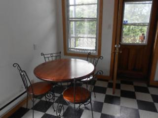 House on the PARK! Metro WiFi CEGEPS - Montreal vacation rentals