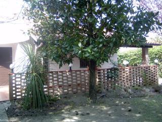 BAHAMAS22 - Lido delle Nazioni vacation rentals