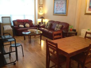 Perfect Cozy Apartment walking distance to metro - McLean vacation rentals